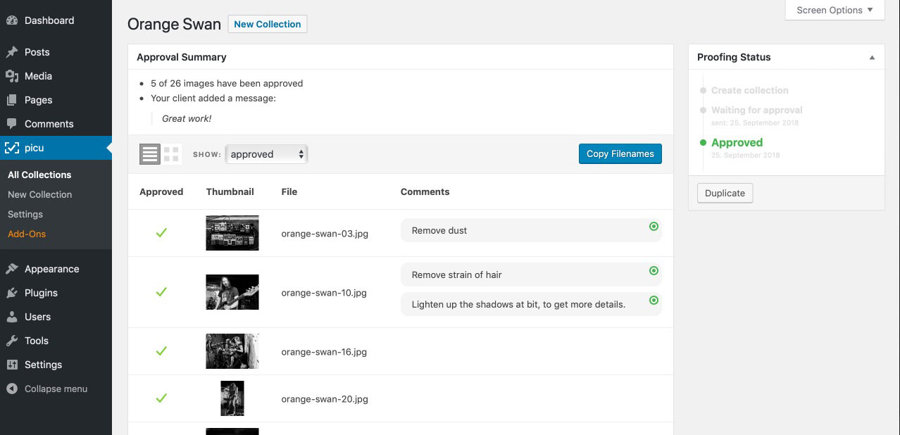 Photographer view of comments and markers in the WordPress Admin